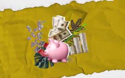 3 dicas para aumentar seu faturamento como freelancer